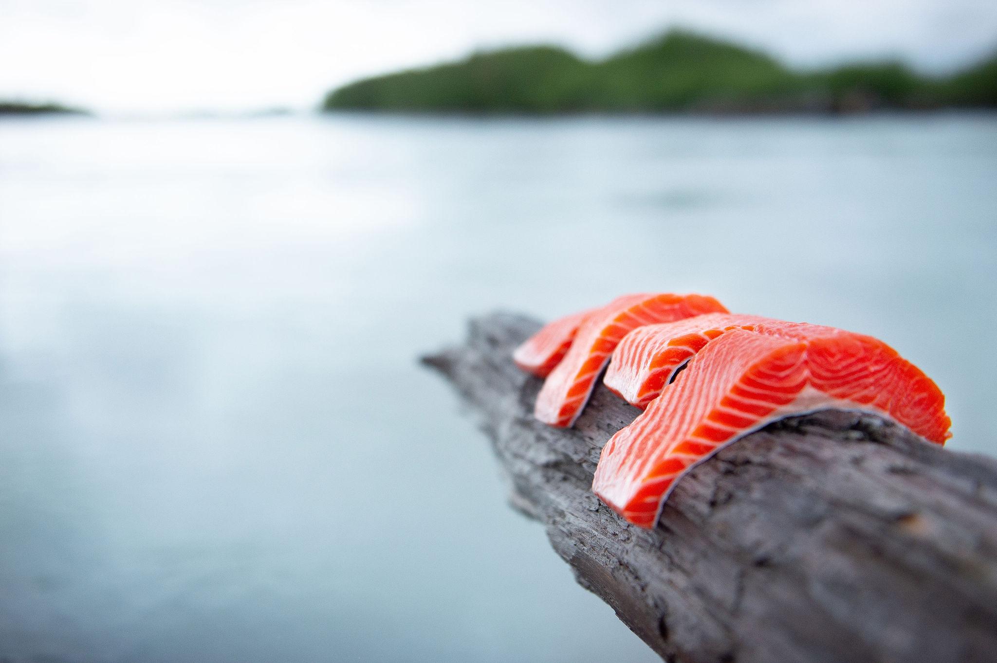 Sockeye salmon filets - buy sockeye salmon