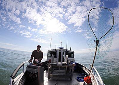 Fisherman John Bocci from Wingham